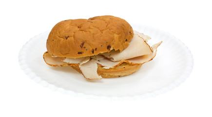 Turkey Sandwich Onion Roll Paper Plate Side View