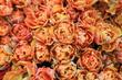 fiori esposizione colture floreali ornamentali