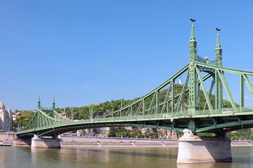 Liberty Bridge. Budapest, Hungary
