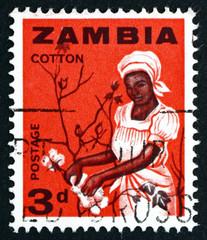 Postage stamp Zambia 1964 Woman Picking Cotton