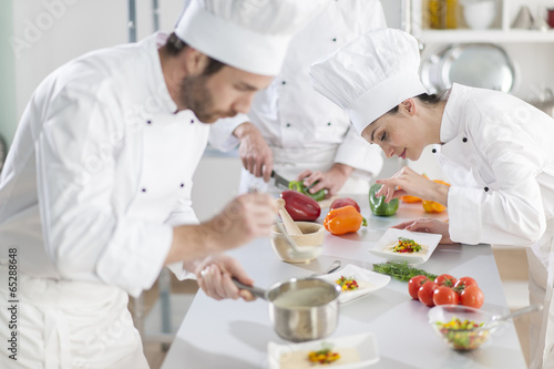 Portrait of a female chef preparing a dish carefully - 65288648