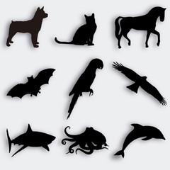 ANIMALES SILUETAS 2