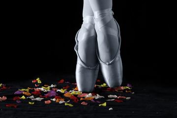 A ballet dancer standing on toes on rose petals with black backg