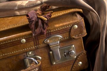 Valigia con fiore secco antico