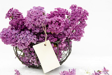 Flieder in Eisenkorb: Duftige Blumengrüße :)