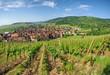 Riquewihr , Alsace (Fr) .
