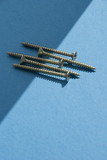 Chipboard Screws on light blue background poster