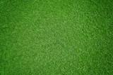 Rasen-Hintergrund - 65306484