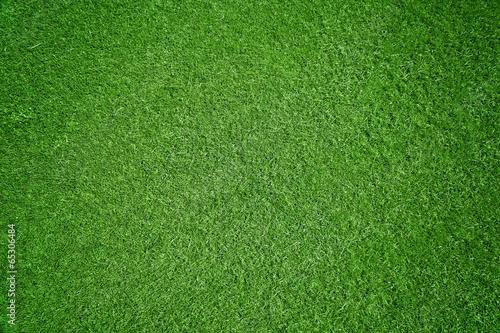 Leinwanddruck Bild Rasen-Hintergrund