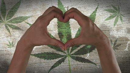 Hands Heart Symbol Marijuana Leaf