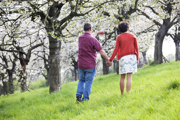 Mature couple runs under blooming cherry trees