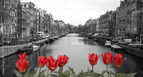 Canvas Amsterdam red tulips in amsterdam