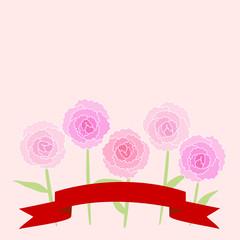 carnation カーネーション