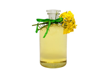 glass bottle of rape seed oil with rape flowers and ribbon