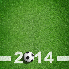 Fußballrasen 2014