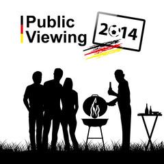Public viewing 2014