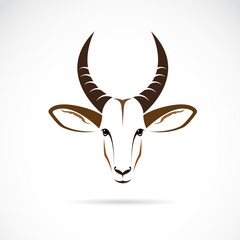 Vector image of an deer head (impala)