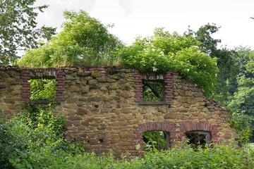 Ruine von grünen Pflanzen überwuchert