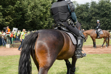 police horse armed armoured policeman in event
