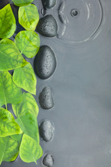 Line of stones and leaves in water