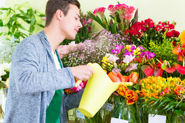Florist im Blumenladen gießt Blumen