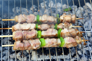 Close-up of beef shish kabobs on the grill
