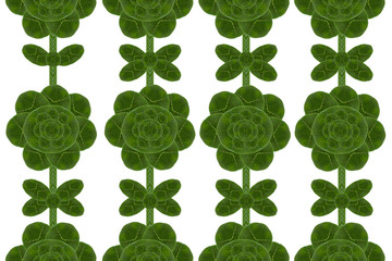 Flower form leaf.( Wall paper concept)