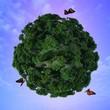 Butterflies and green planet.