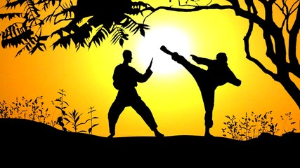 Sunset Karate under Tree