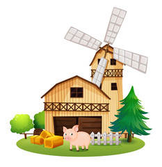 A pig in front of the farmhouse with a windmill