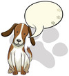 A dog thinking
