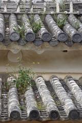 姫路城 軒丸瓦の家紋