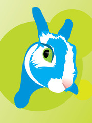 Rabbit fell fright animal bunny eye fear