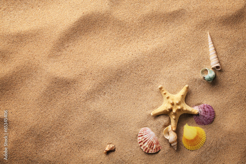 canvas print picture seashells on sand beach