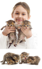 child and striped kittens