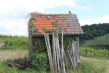 Kleine Weinberghütte
