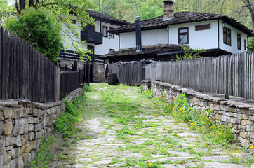 Lane in Bozhentsi Village