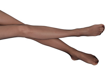 long female legs