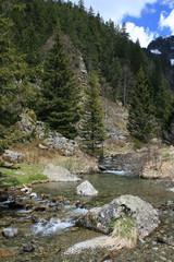 Ruisseau du Doménon à l'Oursière