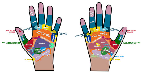 Riflessologia palmare, mani palmi, salute, massaggi