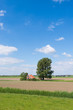 Dutch rural landscape in springtime