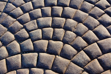 Curved Pattern of Paver Stones Forming Arcs
