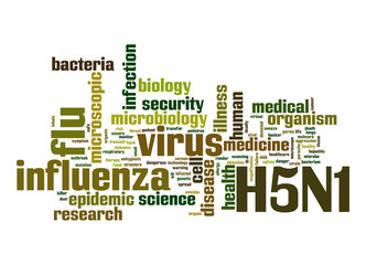 H5N1 word cloud