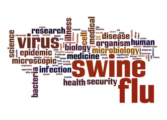 Swine flu word cloud