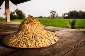 Thai farmer hat