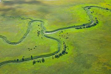 fototapeta mała rzeka na zielonej łące
