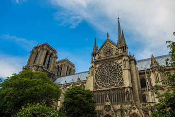 Norte Dame Cathedral de Paris. France
