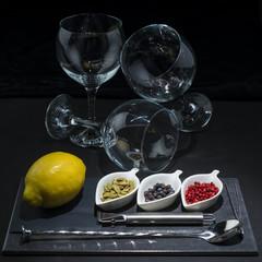 Utensilios e ingredientes para preparar un gin tonic