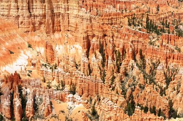 Sunset Canyon at Bryce Canyon National park, Utah.