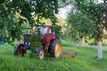 tractor with harrow the garden apple trees in yard